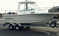 Help with 21ft 1991 Bayliner Trophy Boat Hardtop-trophy-boat-hardtop-denny-babb-jpg