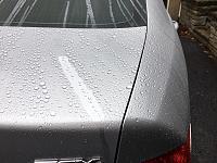 Pinnacle Black Label Diamond Paint Sealant mini-review-16f82d5c-34eb-4f94-bbea-7827cfc9a3de-jpg