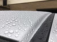 Pinnacle Black Label Diamond Paint Sealant mini-review-f805cf27-496a-4e15-afd9-db79e00ad8d9-jpg