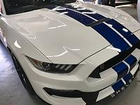 2017 Shelby GT350 and the Dr Beasley's NSP Z1-img_0393-jpg